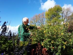 Le jardinier prépare son jardin à l'hiver © B. de Cosnac